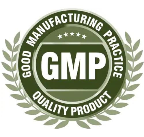 lập kế hoạch đào tạo GMP