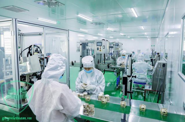 đào tạo GMP sản xuất mỹ phẩm