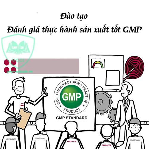 đào tạo GMP cơ bản