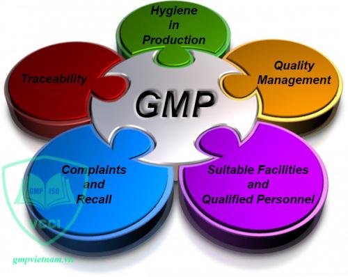khóa đào tạo GMP chất lượng
