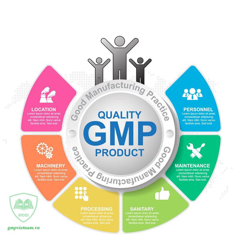 hỗ trợ hoàn thiện hồ sơ xin cấp giấy chứng nhận GMP