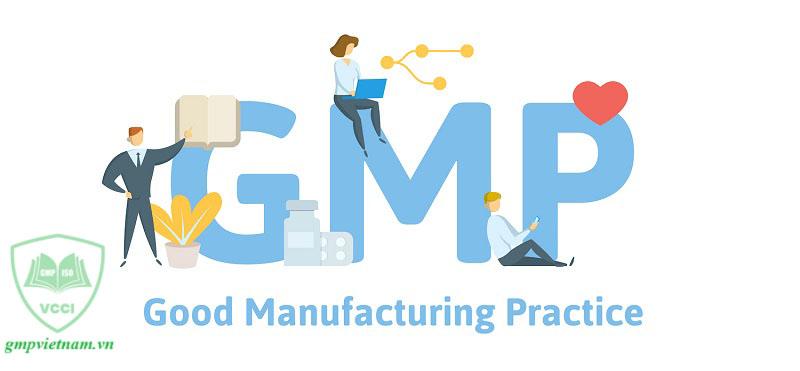 hoàn thiện hồ sơ xin cấp chứng nhận GMP