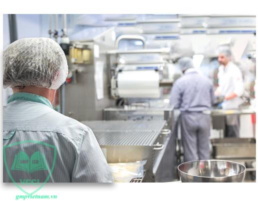 dịch vụ tư vấn ISO 22000 an toàn thực phẩm